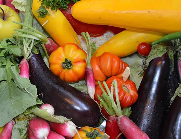 légumes du potager relais du moulin neuf barbaste