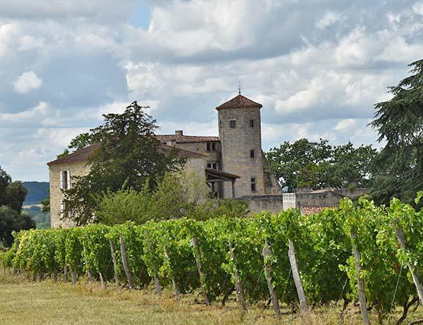 vignes gasconne proche relais du moulin neuf séjour cyclo et groupe tourisme