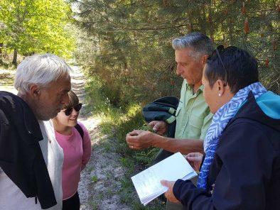 découverte des arbres et de la nature en mars au relais du moulin neuf sud ouest